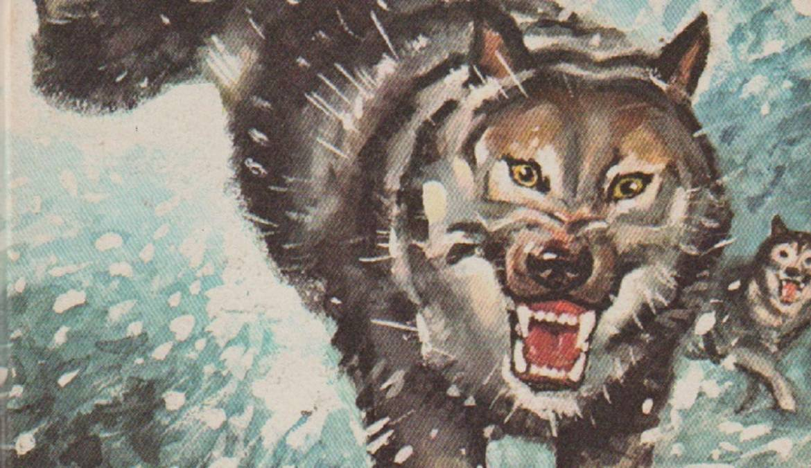 """Book review: """"The Call of the Wild"""" by Jack London"""