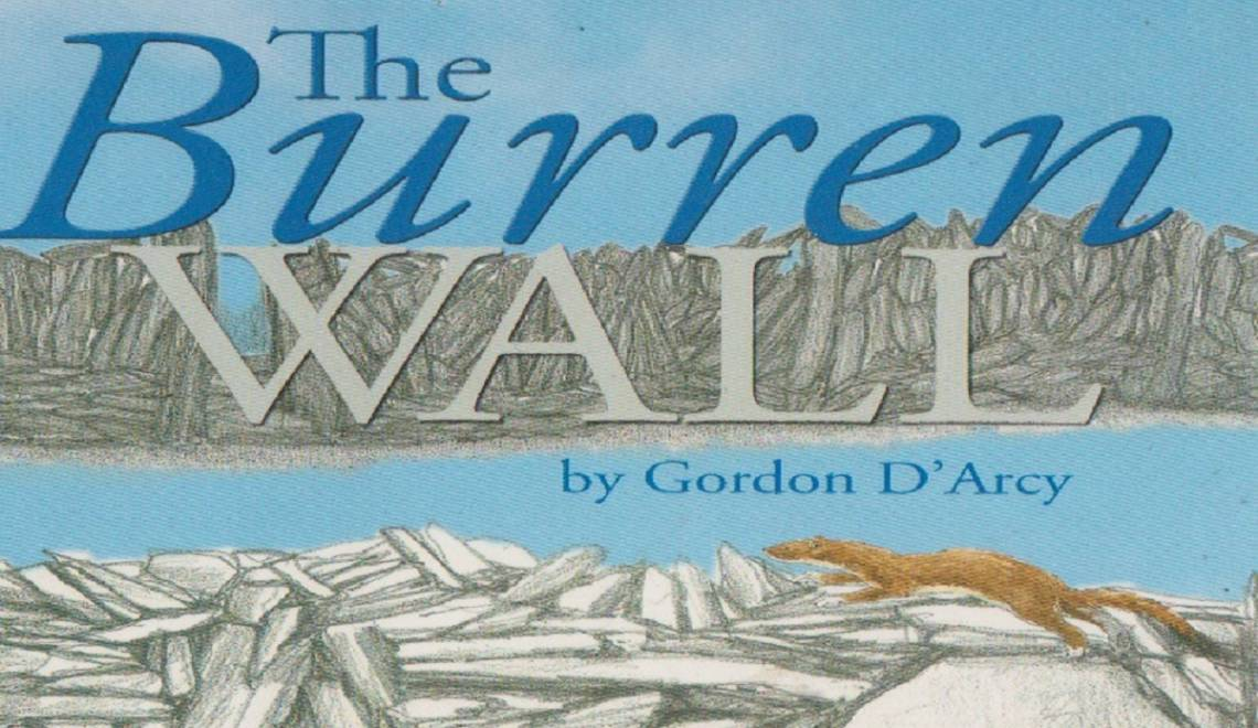 """Book review: """"The Burren Wall"""" by Gordon D'Arcy"""