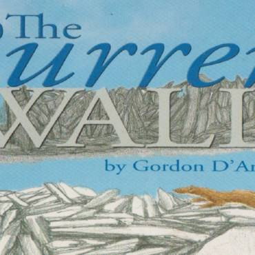 "Book review: ""The Burren Wall"" by Gordon D'Arcy"
