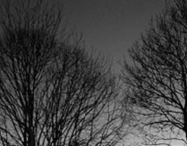 Poem:  No Clouds