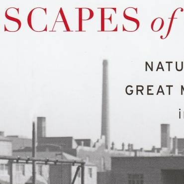 """Book review: """"Landscapes of Hope: Nature and the Great Migration in Chicago"""" by Brian McCammack"""